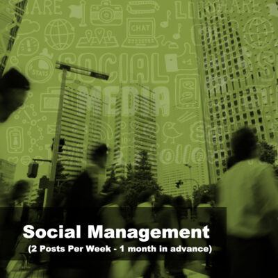 Social Media Marketing 2 Posts & 1 month in advance